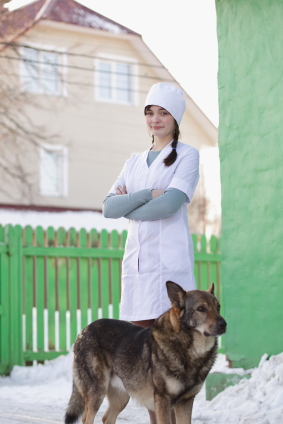 vet tech vs. vet assistant, schooling, jobs and salary differences, Human Body